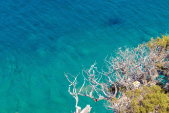 błękitny ocean fotografia